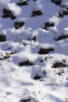 A001雪.jpg