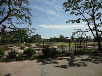 八王子公園.jpg