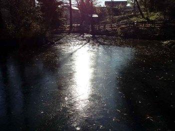 公園の氷.jpg