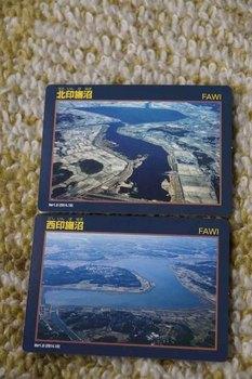 印旛沼カード.jpg