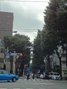 甲州街道.jpg