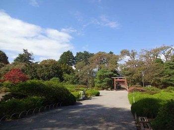 沼田城後1.jpg